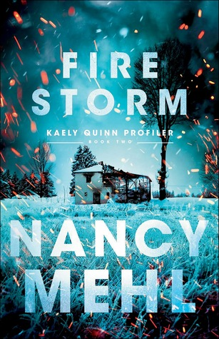 Fire Storm by Nancy Mehl